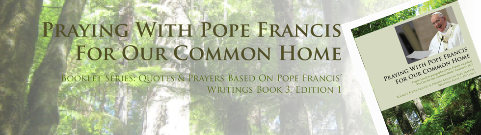 Praying with Pope Francis for our common home booklet